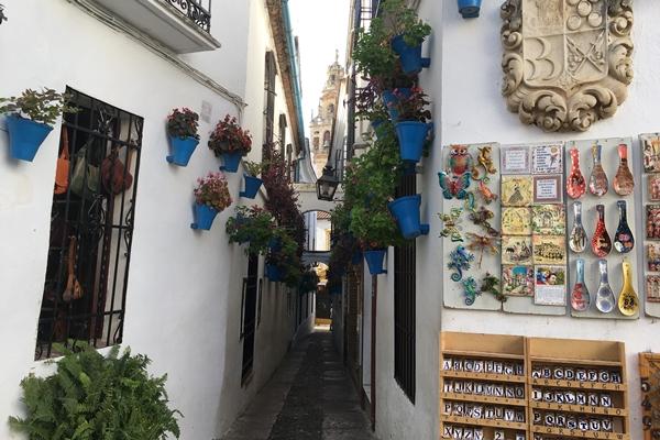 花の小道 Calleja de las Flores