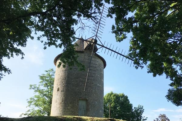 ドンムの王様の風車