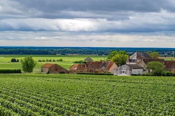コート・ドール 黄金の丘 ブルゴーニュワイン街道 世界遺産 フランス(Côte-d'Or)